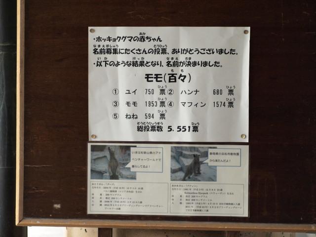 M42911